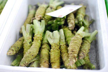 Caisse de wasabi frais